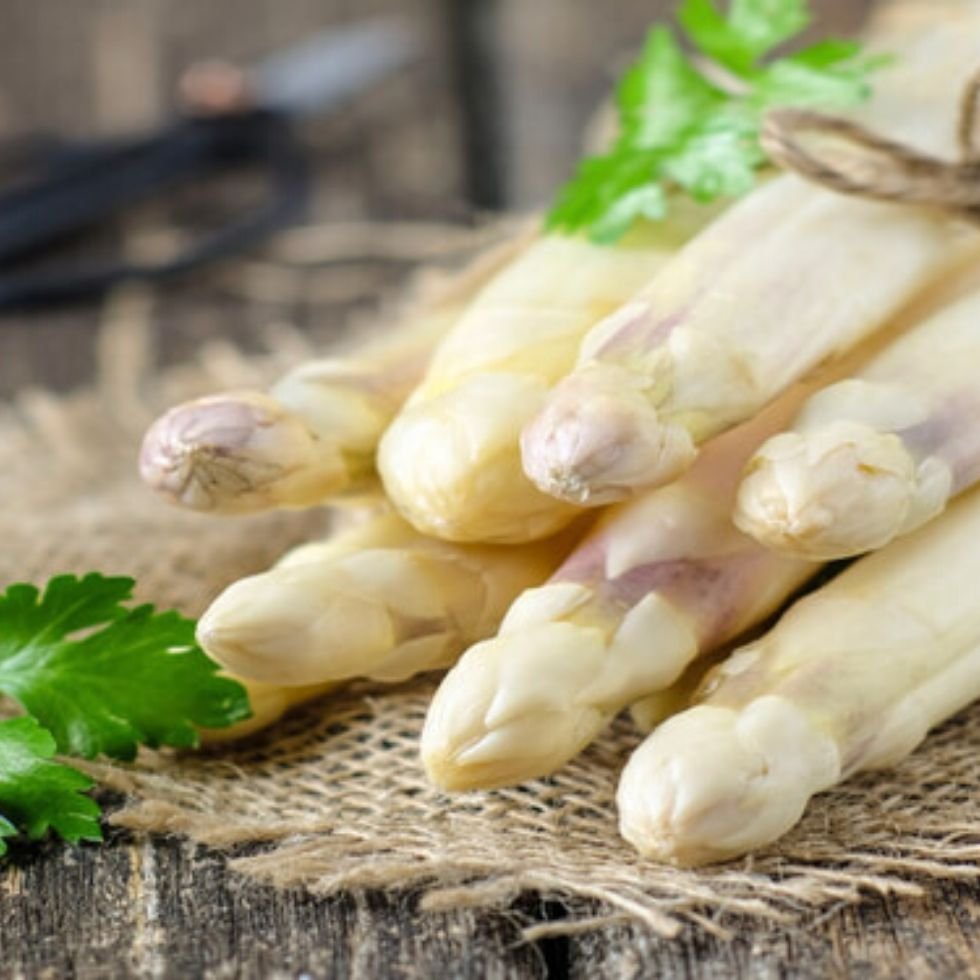 asparago-bianco-di-cordenons-prima-edizione-del-salotto-asparago
